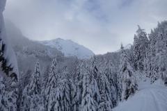 mittlere-Rinne-Wandspitze-Skitour-01